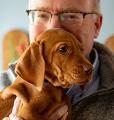 Dr. David Asch and dog
