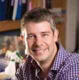 Stephan J. Sanders, BMBS, PhD